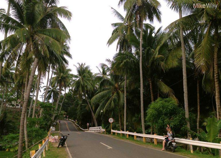 W drodze na plażę Salagdoong. Widoki były nie z tej ziemi.